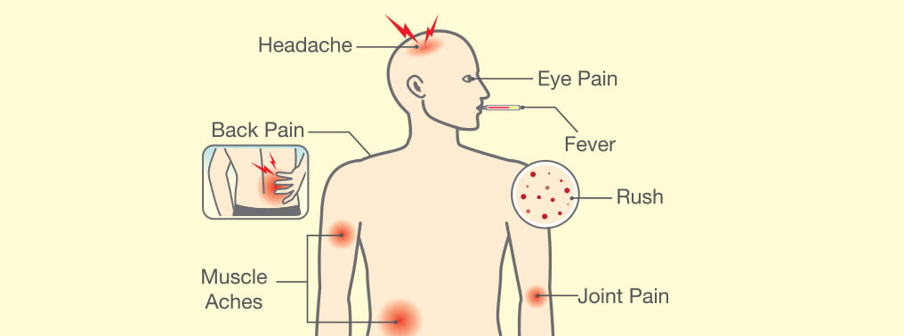 Malaria Malady: Causes and Symptoms of Malaria & Tips to Tackle It