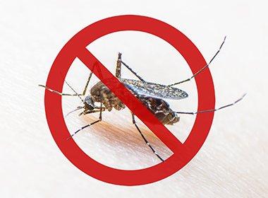 मलेरिया से बचाव के तरीके