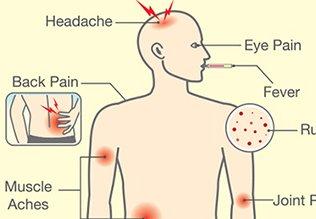 डेंगी के कारण और लक्षण